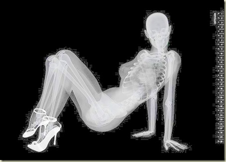 Para quem gosta de ossos e sapatos 13