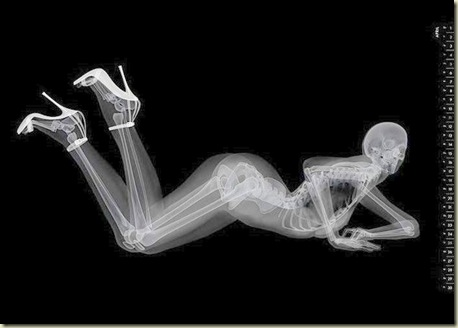 Para quem gosta de ossos e sapatos 11