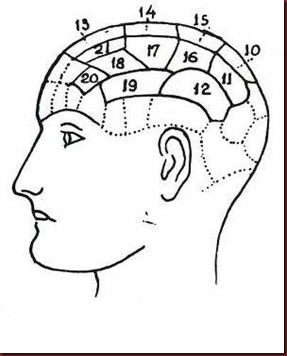 Craniologia 05