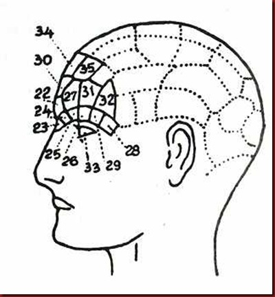 Craniologia 07
