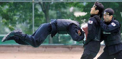 http://lh4.ggpht.com/_bKN77pn74dA/SnnCg7dL-vI/AAAAAAAACQo/9DDcj2TEsBk/karate-police.jpg