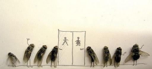 http://lh4.ggpht.com/_bKN77pn74dA/Sth970bw85I/AAAAAAAACy0/dpfPVU54uEU/humor-with-dead-flies07.jpg