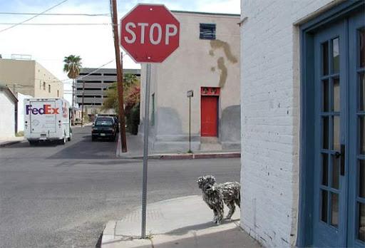 http://lh4.ggpht.com/_bKN77pn74dA/TEuZ7ng2zQI/AAAAAAAAEDw/qxPO8DpIgQ0/sculpture-newspapers-street.jpg