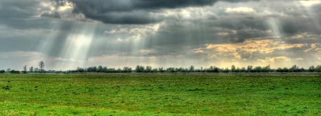 WF Panorama April 2010.jpg