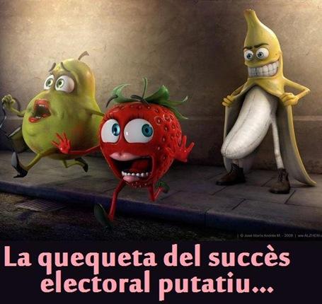 quequeta electorala