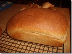 January 2010 Food 010