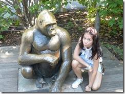 zoo 111