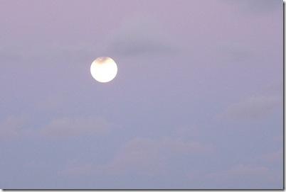 Lua Cheia 21-10-2010 008 c