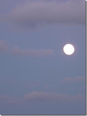 Lua Cheia 21-10-2010 024 c