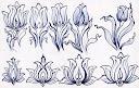 استحاله تغيير شکل گل لاله به گل ختايي طراحي با خودکار طرح تزييني زينتي اثر کار سيد امين نبي پور