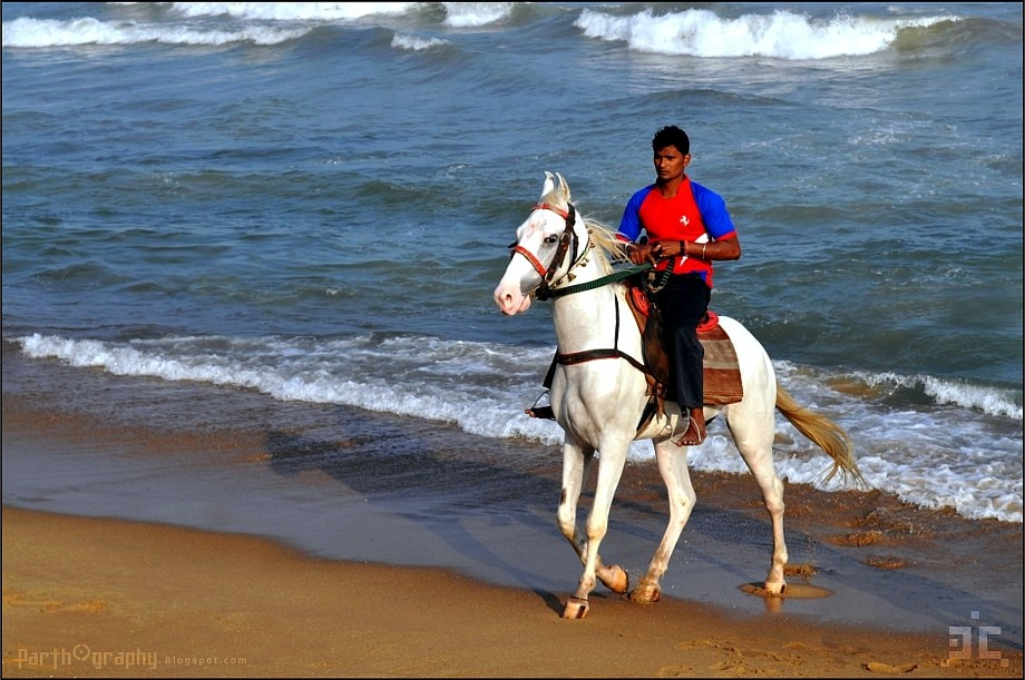 Horseman at Marina Beach, Chennai