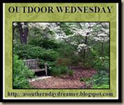 Outdoor_Wednesday