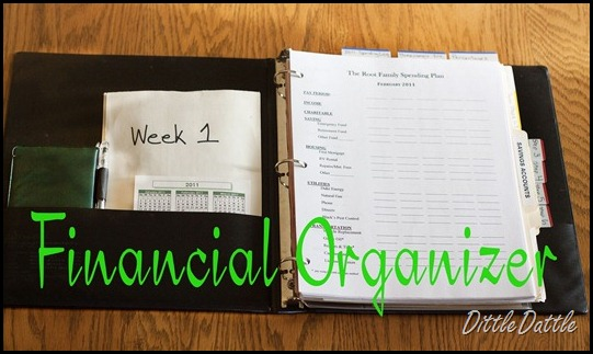 Financial Organized Notebook
