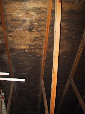 Dark Underside Of Plywood Sheathing Mold Mildew