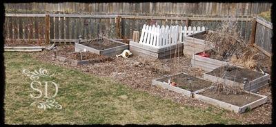 Garden 3-31