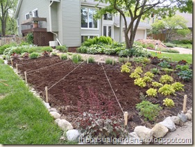 sun ray vegetable garden design in shawna coronados front lawn