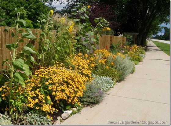 Shawna Coronado's community garden in