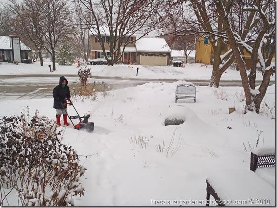 Shawna Coronado shoveling snow on her front sidewalk.
