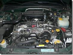 P1000880