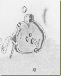 Gassendi Draw