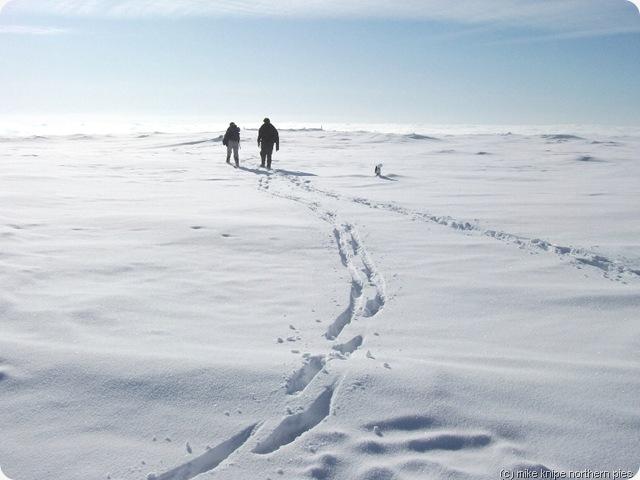 footprints to follow