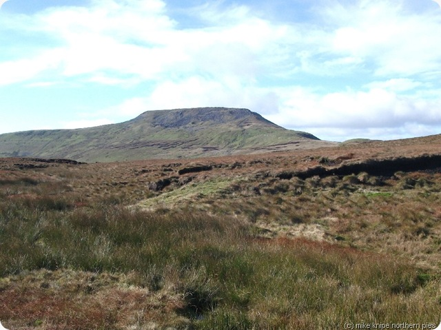 ingleborough from simon fell