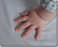 colt hand