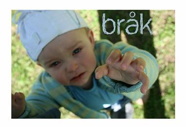 Bråk_edited-1