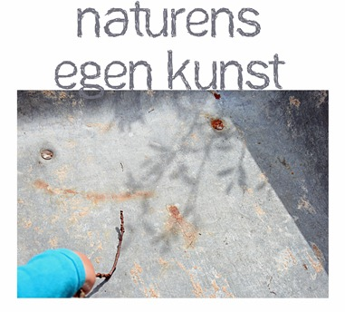 Naturens egen kunst_edited-1