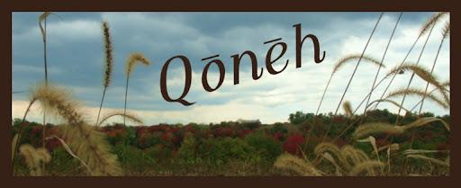 Qoneh