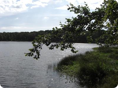Juli og August 2009 071