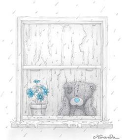 bamse i vindu ser på regn