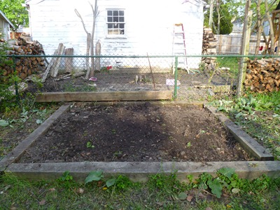 Future vegetable garden