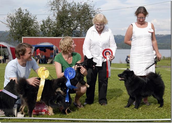 Lapphund utst Biri09_2460_BIS finale