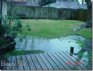 Backyard with water 3