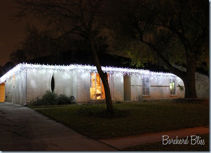 Christmas Lights 2010