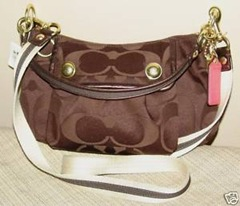 Coach Poppy Signature Groovy Crossbody Bag