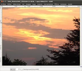 0045_RAW_PANASONIC_FZ8.RAW-2.0 (RGB, 1 capa) 3096x2319 – GIMP