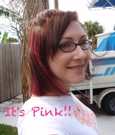 Heres a pic of pink highlights in my dark brown hair.