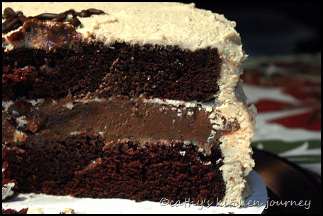 chocolatepbicecreamcake