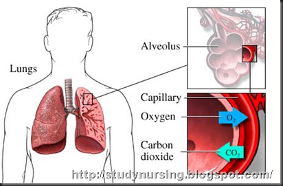 the clinical description of pleurisy What is pleurisy well, it's a condition that affects the lining of the lungs, and it can make breathing extremely painful and difficult read this.