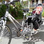 lou_xtracycle_peapod 007.jpg