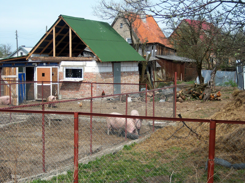 Bilder zinten 2010 for Russisches haus