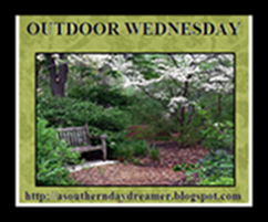 OutdoorWednesdaylogo54544444_thumb2