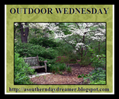 OutdoorWednesdaylogo55