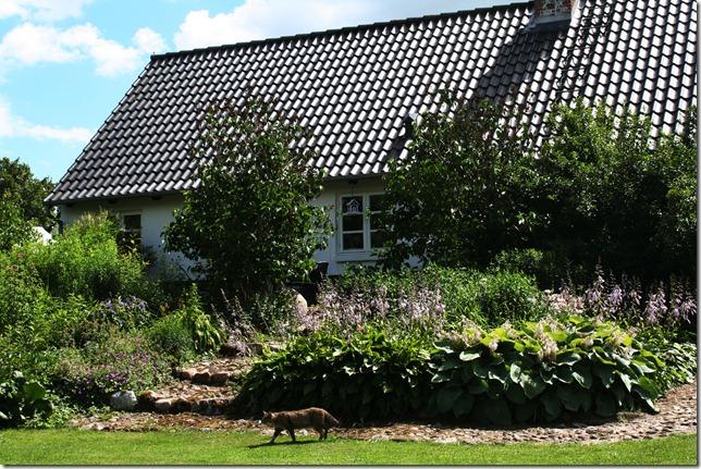 Danmark sommeren 2010 014