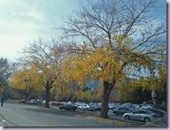 Boulder 11