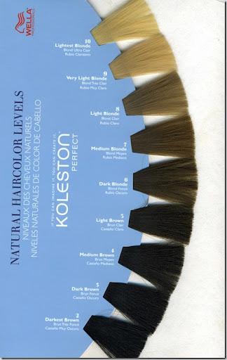 Wella Hair Colour Chart
