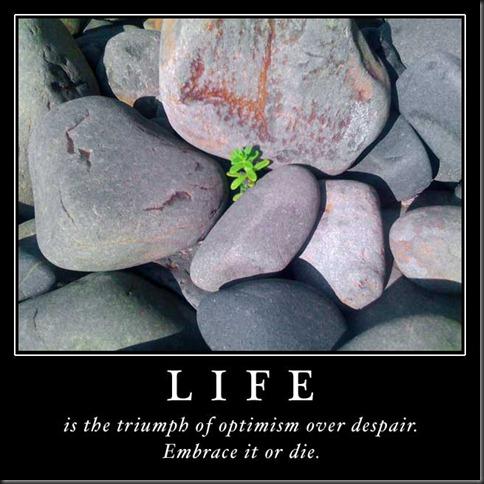 life-triumph