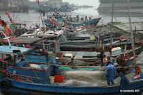 Fishermen taking fish from their nets and repairing their nets in the harbour of Chongwu, China at low tide